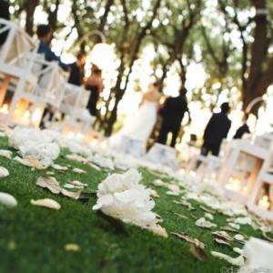 civil ceremony in Puglia