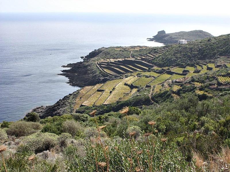 The Black Pearl of the Mediterranean Sea, Pantelleria island