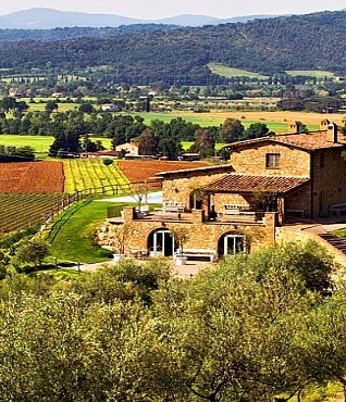 Planning a wedding ceremony  among the vineyards